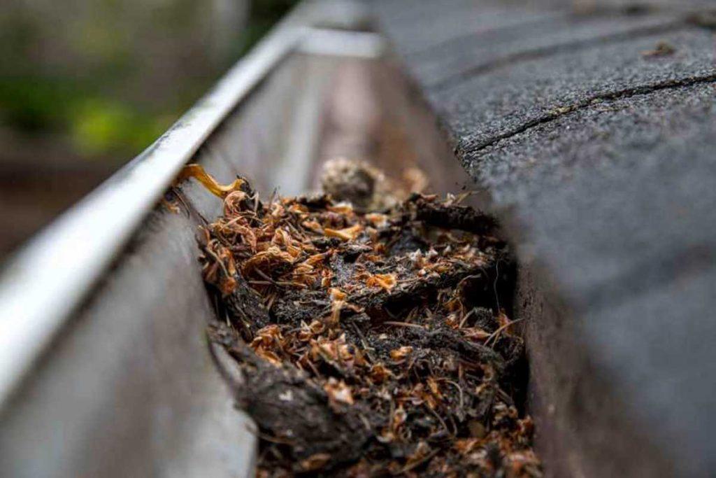Čistenie dažďových zvodov za výhodné ceny v Žiline - Bytči a okolí